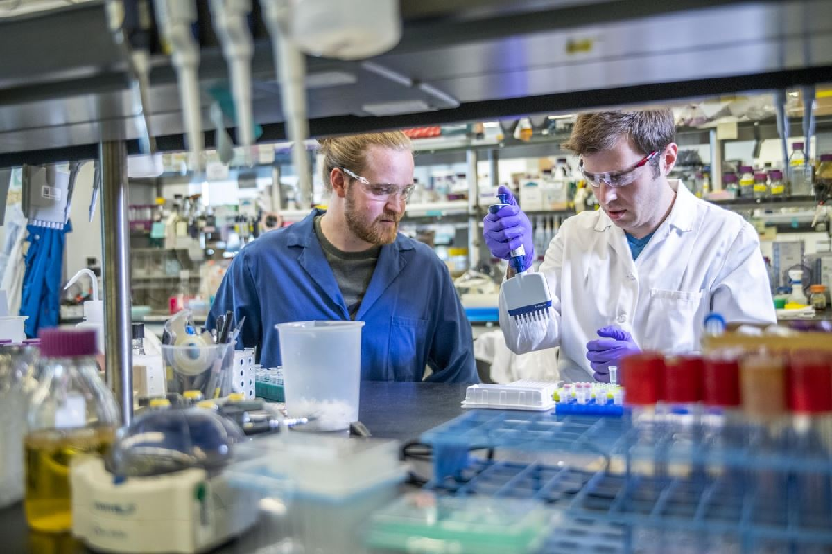 Scientists and Researchers on UK Global Talent Visa
